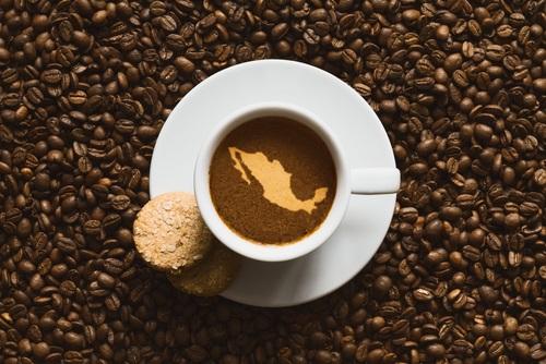 production de café